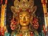 Buddha Thikse Ghompa India